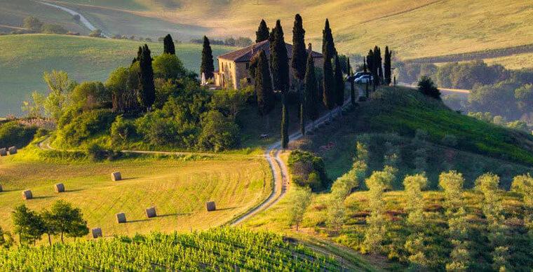Anteprime di Toscana 2020: news с полей и санджовезе ди маре