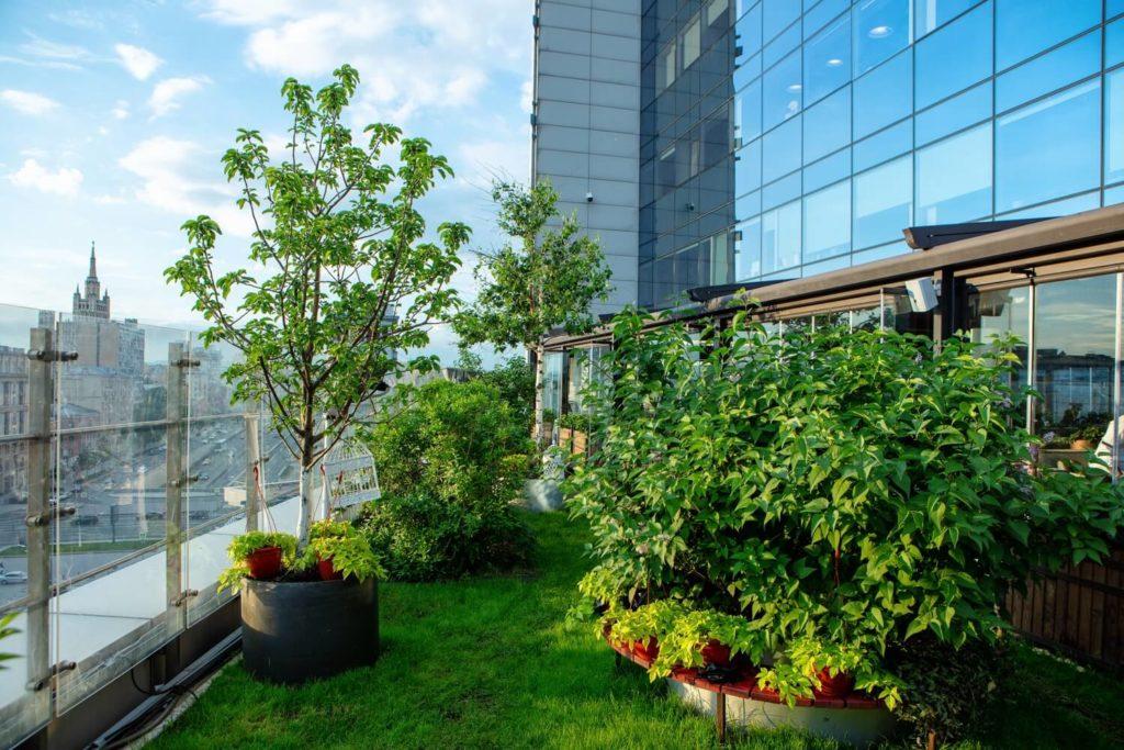 Летний сад Levantine